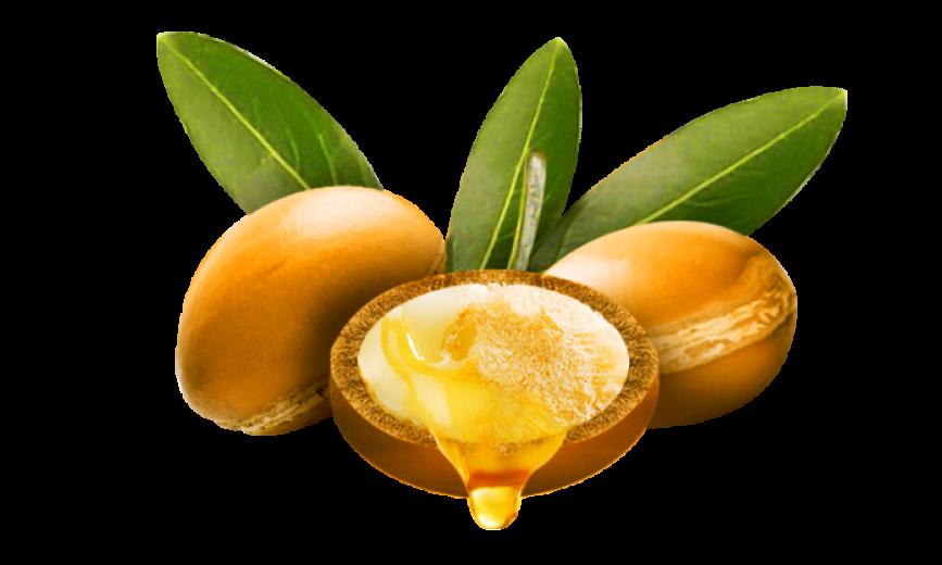 argan-nuts